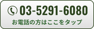 03-5291-6080